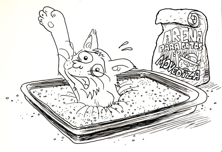 Comparación de tipos de arena de gato | Cosas de Gatos