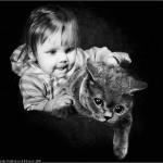 Gatos y bebés se irán conociendo poco a poco