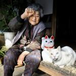 misao-fukumaru-gato-japones